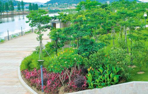 滨江新区天沙河景观是蓬怡园林公司近年来的杰作之一