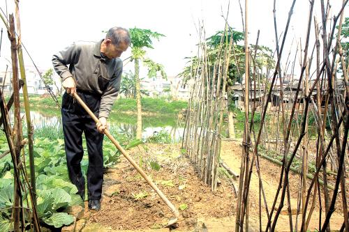 种菜的第一步是松土