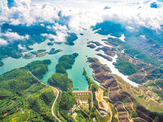"""镜头下的森林之城——江门市创建""""国家森林城市""""印象篇摄影大赛获奖图片"""