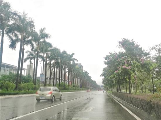 蓬江区发展大道无违规停放机动车。