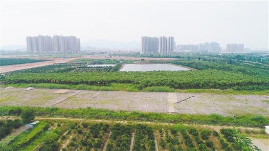 华裔城摘得的地块位于枢扣儿新城片区,位置较好,周边项目较多。